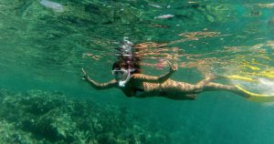Crazy Snorkelling with Sharks and Rays on Caye Caulker