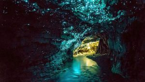 Top 5 Places to Visit in New Zealand