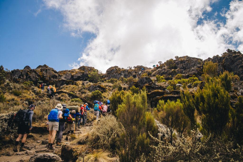 20 Signs You've Just Trekked (or are Trekking) Mount Kilimanjaro