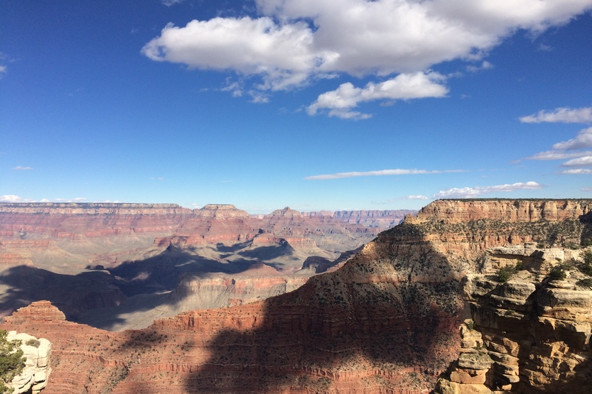 A Journey with bamba to Arizona