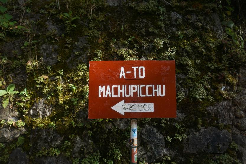 The Machu Picchu Jungle Trek